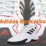 Best Adidas Basketball Shoes That Fit Your Pocket-Budget in 2021