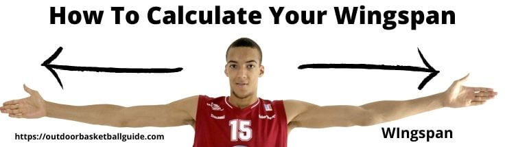 How To Calculate Your Wingspan